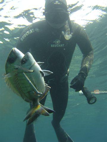 pedro carbonell 255872998 Pedro Carbonell vence en el X Open Ciutat de Palma de Pesca Submarina