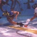 Eudi Show: Sport alla ribalta – l'Hockey Subacqueo
