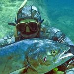 Pesca Sub: Vivere la Natura Come Tutti gli Animali, da Predatori e, se va male, da Prede