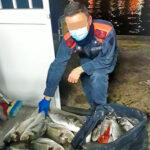 Pesca Sportiva e Bracconaggio: Abbiamo Toccato il Fondo?