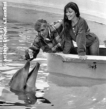 Bandini Mayol delfino
