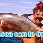 Viaggi di pesca: Diario Australia (4a parte)