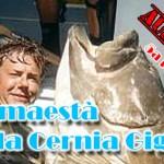 Viaggi di pesca: Diario Australia (5a parte)