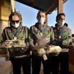 Gare Pesca Sub: Lai, Petri e Griselli Vincono il 2° Trofeo CSAT