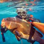 Video Pesca Sub: una Bella Cernia in Pochissima Acqua (8 kg)