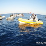 Assoluto 2012 di pesca in apnea: la rivincita