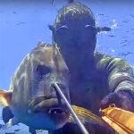 Video Pesca Sub: il Primo Dentice Non Si Scorda Mai (7 kg)