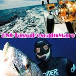 Licenza di Pesca in Mare a Pagamento: Ritorna l'Idea dei 100 Euro