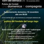Il 19 novembre pulizia dei fondali a Torri del Benaco