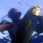 [Video] Pescasub profonda: Ritorno sul Relitto – ISTANTI dal BLU ep.18