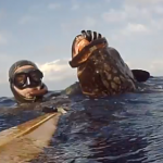 Pescasub sul Banco Skerki: Cernione al volo – Tra Sicilia e Tunisia ep.1