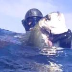 [Video] Pescasub: Aprile all'Aspetto – ISTANTI dal BLU ep.10