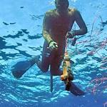 Il piombo mobile: la pesca subacquea in assetto variabile