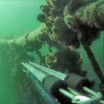 Pesca Illegale: Pensavano fosse Disperso invece era Dentro un Allevamento