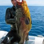 Video Pescasub: Aneddoti e…cernie (parte 1)