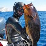 Video Pescasub: Aneddoti e…cernie (parte 2)