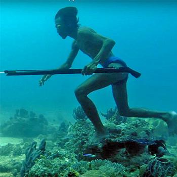 l'evoluzione nei Bajau ha potenziato gli effetti del diving reflex