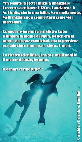 bandini delfino