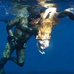 Video Pescasub con i Maestri: Stefano Bellani e la Cernia in Caduta