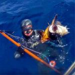 Video Pesca Sub: una Coppiola di Cernia Bianca e Bruna (10 + 3 kg)