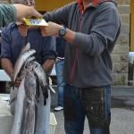 Gabriel Del Bon vince il Trofeo Nautica Grignano 2012