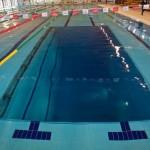 Nuove opportunità con l'ASD Swim like a dolphin