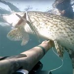 Campionato Italiano per Società di Pesca In Apnea in Acque Interne 2016