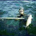 Silver Surfer: il cavedano