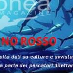 Censimento catture e avvistamenti tonno rosso