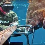 Video Pescasub: la Grossa Cernia sorpresa nell'Oscurità