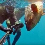 Video Pescasub: la Cernia e il Tiro Impossibile