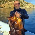Video Pesca Sub: una Grossa Cernia in Caduta (23,5 kg)