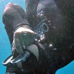 Rottura del Timpano in Immersione: Quando, Perchè, Cosa Fare e Cosa Evitare