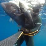 Video Pesca Sub: Una Coppiola da 13 kg di Dentice