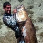Video Pescasub: la Grande Ombrina Boccadoro (35 kg)