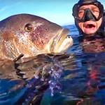 Video Pescasub: il Grosso Dentice Sorpreso all'Ombra della Tettoia di Roccia