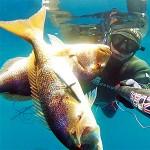 Video Pescasub: 2 Grossi Dentici con un Colpo Solo