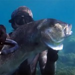 Video Pescasub: la coppia di Denticioni all'Ultimo Tuffo