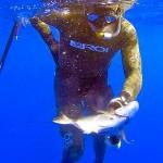DIRETTA di GARA – Campionato Assoluto Pesca in Apnea 2015 – 2a Giornata