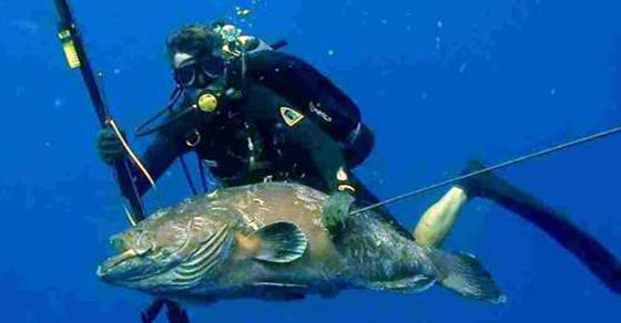 divieto pescasub bombole