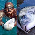 ENPA Savona: la Pesca Sportiva va ridimensionata, o meglio, Abolita!