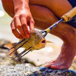 Regole Pesca Sub con Fiocina a Mano, Raffio, Coltello e/o Pole Spear