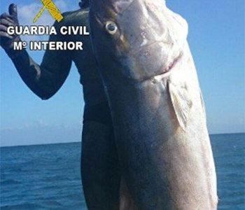 Pesca e Social Network: Quando Video e Foto Sono Prova di Illecito