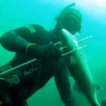 Pesca Sub Spigola: Guida alla Scelta e all'Uso della Fiocina Francese