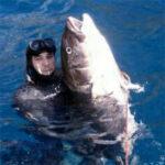 Video Pesca Sub: Tante Ricciole da non Sapere Quale Scegliere (50 kg)