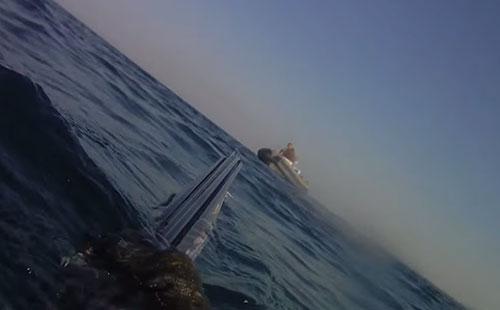 Storie di ordinaria quotidianità: un pescatore in apnea viene puntato da un gommone