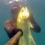 Video Pescasub: Una Leccia all'Improvviso