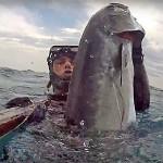Video Pescasub: la Grossa Leccia a Bruciapelo