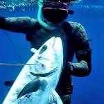 Video Pescasub: la Coppia di Leccie Agguatate in Risalita (21 kg)