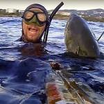Video Pescasub: la Grossa Leccia al Bacio